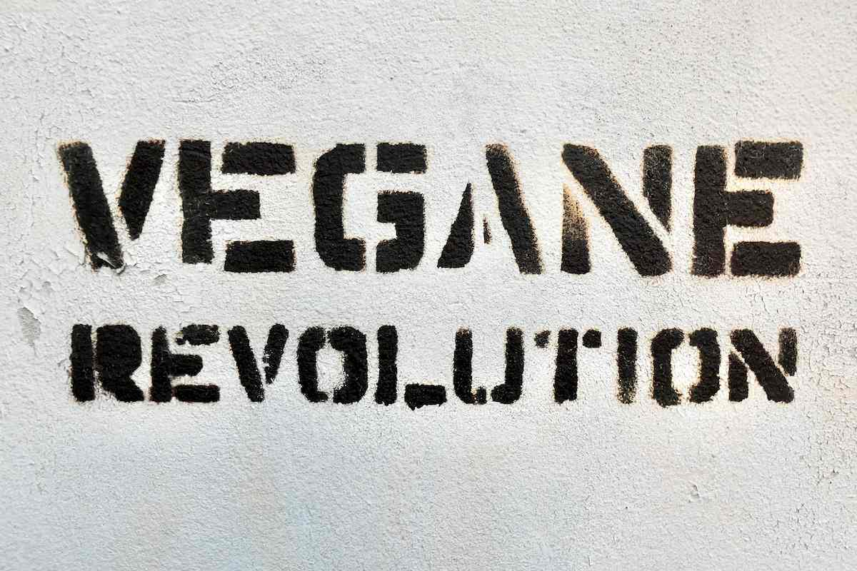 Dieta keto vegana